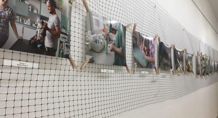 výstava-objektív-františka-kollára