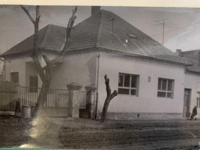špecialna-zakladna-škola-v-šali-oslavuje-70-rokov