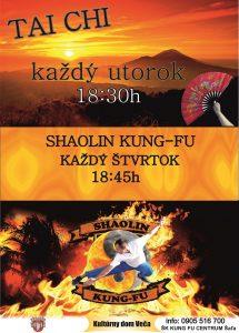 Shaolin Kung Fu @ Kultúrny dom Veča